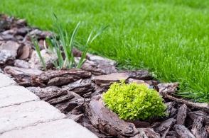 4. Tvorba novej záhrady